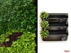 Просмотреть foto Другие предметы интерьера Фитомодуль 60х65 см для вертикального озеленения 36547315 в Ижевске