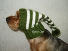 Уникальное фотографию Одежда для собак Шапки для собак 36626371 в Москве