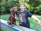 Фотография в Собаки и щенки Продажа собак, щенков Кинолог, стаж в профессии более 15 лет. Дрессировка в Москве 0