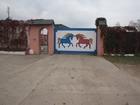 Фото в Спорт  Спортивные клубы, федерации Продается конюшня    В 6 км. от МКАД по Щелковскому в Москве 0