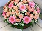 Скачать фото  Розы и оригинальные букеты с бесплатной доставкой, 38392743 в Санкт-Петербурге
