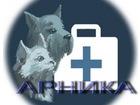 Просмотреть foto Ветеринарные клиники Ветеринар на дом, Ветеринарная выездная служба Арника 38404956 в Анапе