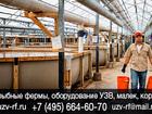 Просмотреть фотографию Курсы, тренинги, семинары Осетровая ферма под ключ цена, Купить УЗВ оборудование для осетровой фермы где купить оборудование для осетровой фермы осетровая ферма бизнес блан, Осетровые фе 38570103 в Москве