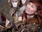 Уникальное изображение Фото- и видеосъемка Шоу обезьян для свадьбы и дня рождения 39009583 в Москве