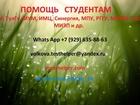 Просмотреть фотографию  Окажу помощь в сдаче тестов и написании работ 39087119 в Москве