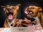 Смотреть фотографию  Сушеное кроличье и говяжье мясо для собак, По оптовым ценам в розницу! 39714456 в Ульяновске