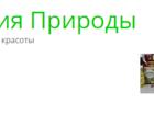 Свежее фотографию Салоны красоты Салон Магия и Энергия природы 39925499 в Москве