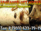 Свежее фото Разные услуги Озониование, Уничтожение, травля насекомых без запаха и химии, 40042228 в Москве