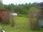 Смотреть фотографию  Продается дача с участком в деревне Курочкино 40373038 в Нижнем Новгороде