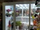Свежее фотографию  Холодильная камера для цветов 44939800 в Москве
