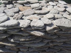 Свежее foto  Галтованный камень Дракон песчаник натуральный природный 45266856 в Москве