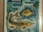 Скачать изображение Коллекционирование Советские наборы спичек Советская радиоаппаратура и Речные и озёрные рыбы 49314200 в Переславле-Залесском