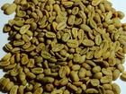 Просмотреть изображение  Кофе зелёный зерно и какао бобы 54060597 в Москве