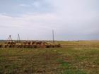 Скачать бесплатно фото Земельные участки Продаю землю – ухоженное поле с отличными подъездными дорогами 65677705 в Коломне