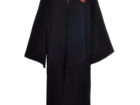 Смотреть изображение  Костюм Гарри Поттера Гриффиндор от PENIVAIZ 66583811 в Евпатория