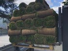Просмотреть фотографию Ландшафтный дизайн Рулонные газоны Сочи, Красиво и удобно 78181811 в Сочи