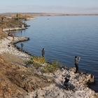 на берегу Ириклинского водохранилища