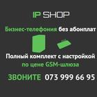 IP-телефония для бизнеса без абонплат