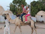 Экскурсии в Египте от организаторов из СНГ Отправляйтесь в незабываемое путешест