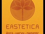 Фитнес-студия Eastetica Фитнес-студия Eastetica – премиум фитнес-студия йоги, пи