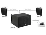 Фоновая акустика Акустические системы для фоновой озвучки ресторанов, кафе, мага