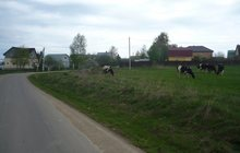 Земля по Дмитровскому шоссе