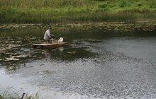 Бревенчатый дом в тихой деревне, недалеко от речки, 300 км от МКАД