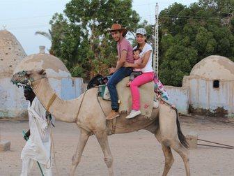 Скачать бесплатно изображение Турфирмы и турагентства Экскурсии в Египте от организаторов из СНГ, 14527852 в Москве