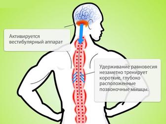 Просмотреть foto  Сидение-тренажёр для спины – исправляет осанку, избавляет от боли 33818910 в Архангельске