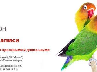 Просмотреть фото Продажа домов УшиХвост- услуги для животных! 34481253 в Москве