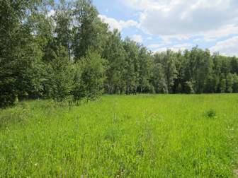 Смотреть фотографию  Участок 12,26 соток в поселке Лесной остров 37854262 в Москве