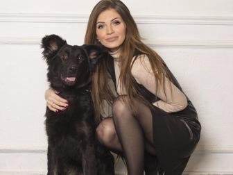 Скачать foto  Молодая активная собака Честа в хорошие руки, 44181668 в Москве