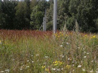 Новое фото Земельные участки Участок в деревне 30 соток (ИЖС) 49344672 в Москве