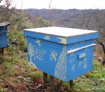 Фото в Товары Товары для сада и огорода Ульи 12-рамочные, 16-рамочные, 10-рамочные в Муроме 0