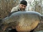 Новое изображение  Активатор Клёва FishHungry 38471169 в Мысках