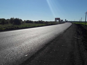 Свежее изображение  Потерялась собачка (йоркширский терьер) в результате ДТП на трассе М - 7 39674991 в Набережных Челнах