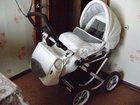 Скачать бесплатно фотографию Детские коляски Коляска Jedo Bartatina PLUS 2 в 1 32671836 в Нижнем Новгороде