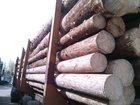 Изображение в Строительство и ремонт Строительные материалы Продаю кругляк сухостой зеленый хвоя с доставкой. в Нижнем Новгороде 1900