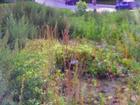 Фото в Недвижимость Земельные участки Продажа земельного участка 11 соток в Приокском в Нижнем Новгороде 25000000