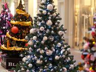 Более 20 видов Искусственных Елей + Подарок Близится Новый Год, а вы в раздумьях