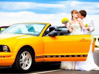 Смотреть фото  Видеограф FULL-HD, Ведущий + DJ, Свадьбы, Юбилеи 33728519 в Нижнем Новгороде