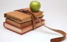 Выполню отчеты по практике и дипломы
