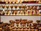 Фото в Кошки и котята Выставки кошек Уважаемые коллеги!   ФПЦ «ZOOSTAR»   приглашает в Новосибирске 150