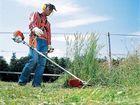 Уникальное фото Разные услуги Скошу траву, вспашу землю, Устройство газона в Новосибирске 37705348 в Новосибирске