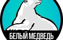 СЦ Белый медведь Ремонт холодильников и стиральных машин