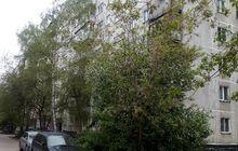 Сдается 3-комнатная квартира в Академгородке