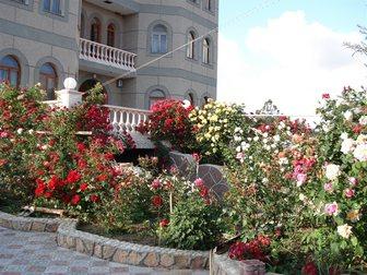 Смотреть фото Гостиницы, отели Отдых в Крыму 32739741 в Новосибирске