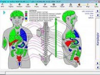 Уникальное изображение  Имаго диагностика 33041133 в Новосибирске