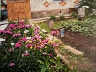 Скачать фото  Продам дачу 37389111 в Новосибирске