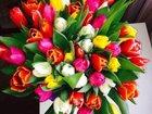 Скачать изображение  Цветы с доставкой в Москве 33758827 в Омске